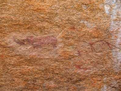 Bushman painting of a rhino