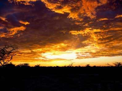 Sunrise at Etosha