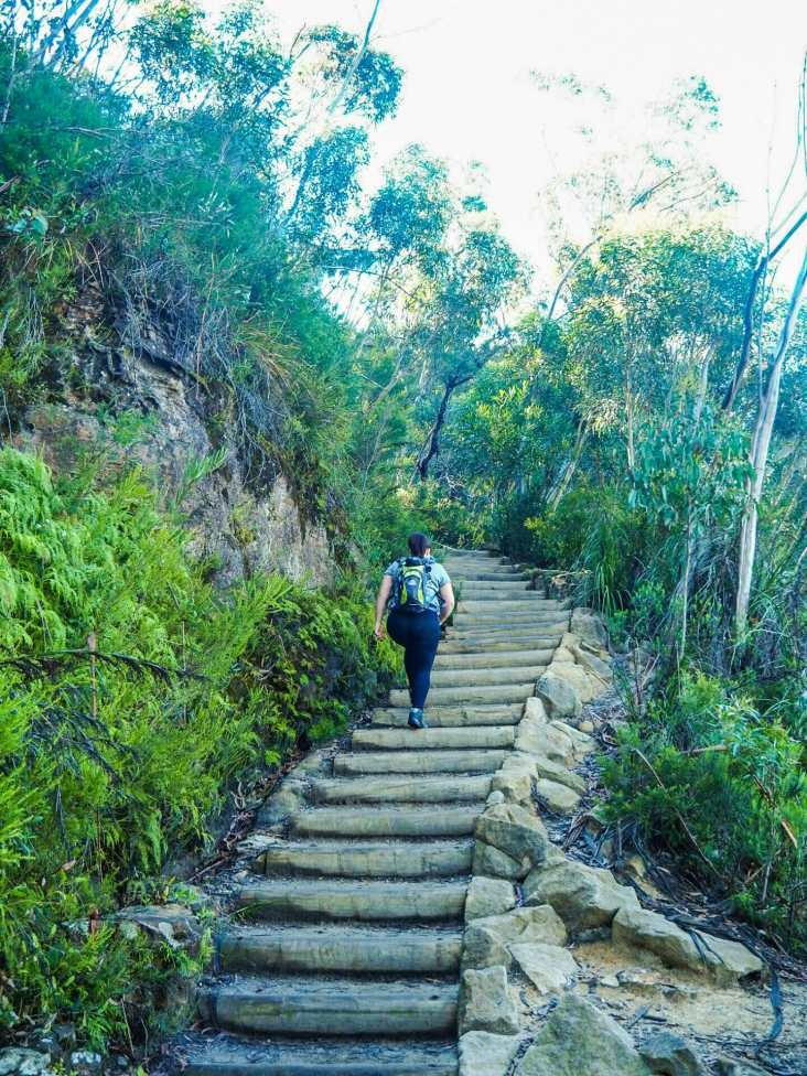 Lucy stair-stepping up to Lady Darley Lookout