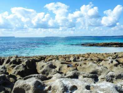No shortage of photo ops at Hyams Beach