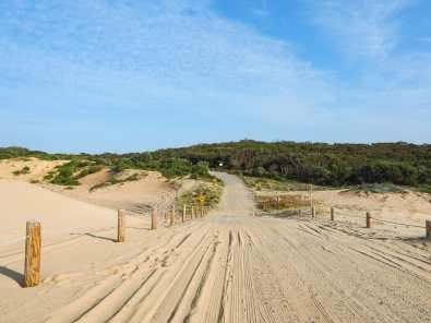 The access trail onto Stockton Beach