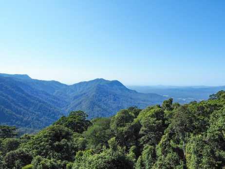 Dorrigo Rainforest Centre