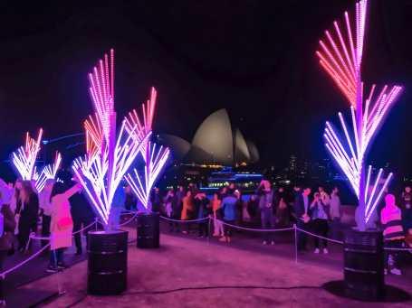 Amazing views back onto the Opera House from the Royal Botanic Garden