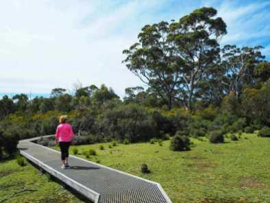 Platypus Waterholes walk