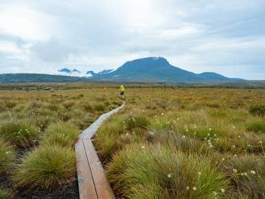 Setting out on day 3 of the Overland Track