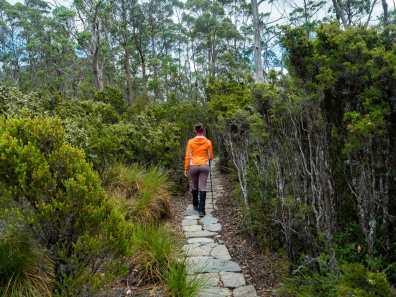Walking to Hartnett Falls
