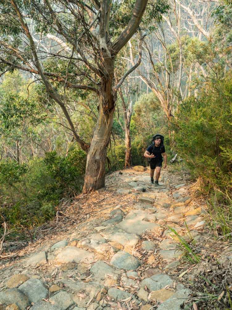 Callum on the trail