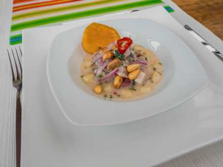 The amazing final product— ceviche