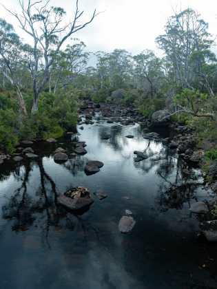 A very inviting creek