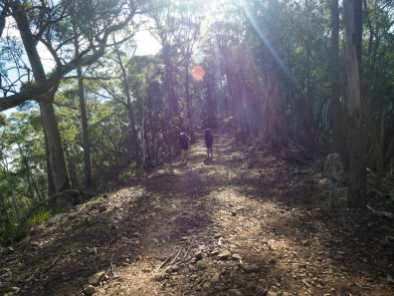 Our steep uphill climb from Jenolan Caves