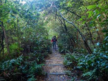 Several kilometres of stair climbing