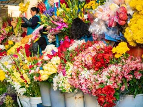 Flowers at San Pedro Market