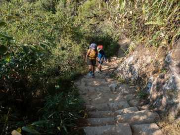 Dad and Eileen climbing Huayna Picchu