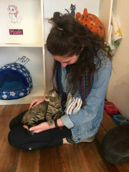 Cuddling kitties at the cat cafe in Cusco