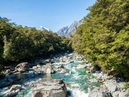 The drive to Milford Sound