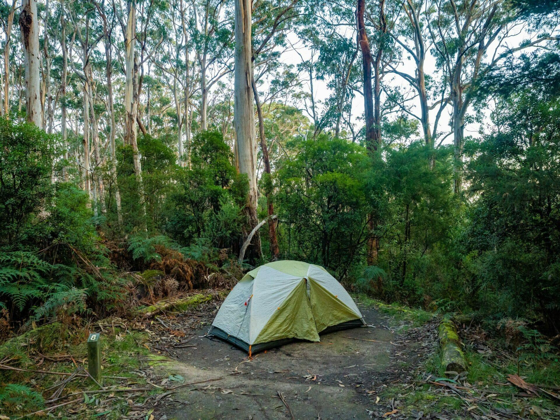 Great Ocean Walk hike Australia Elliot Ridge campsite