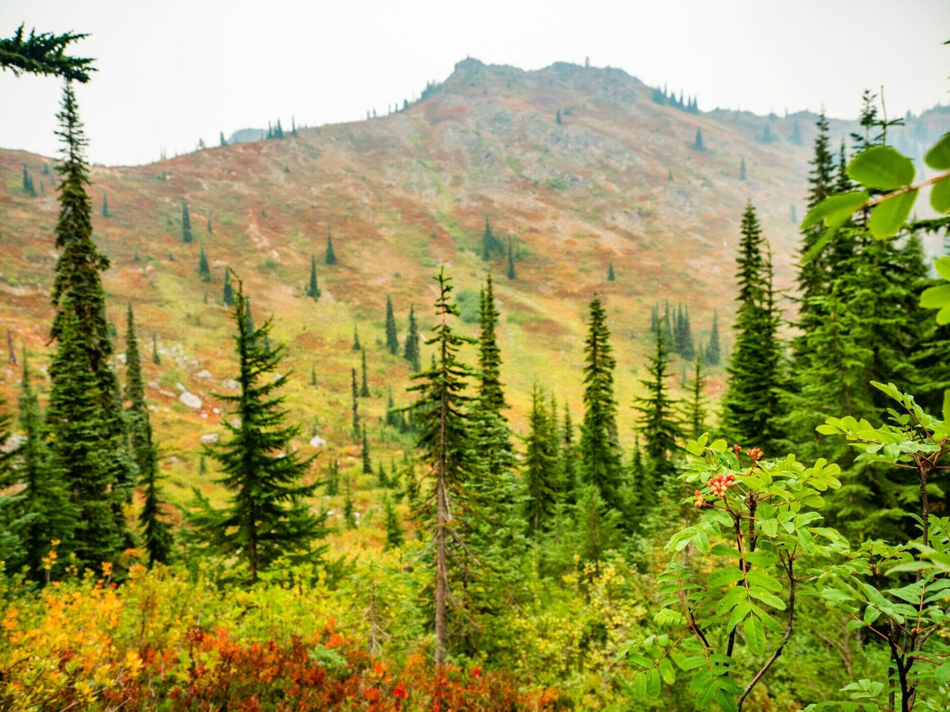 girl hiking autumn Alpine Lakes Wilderness