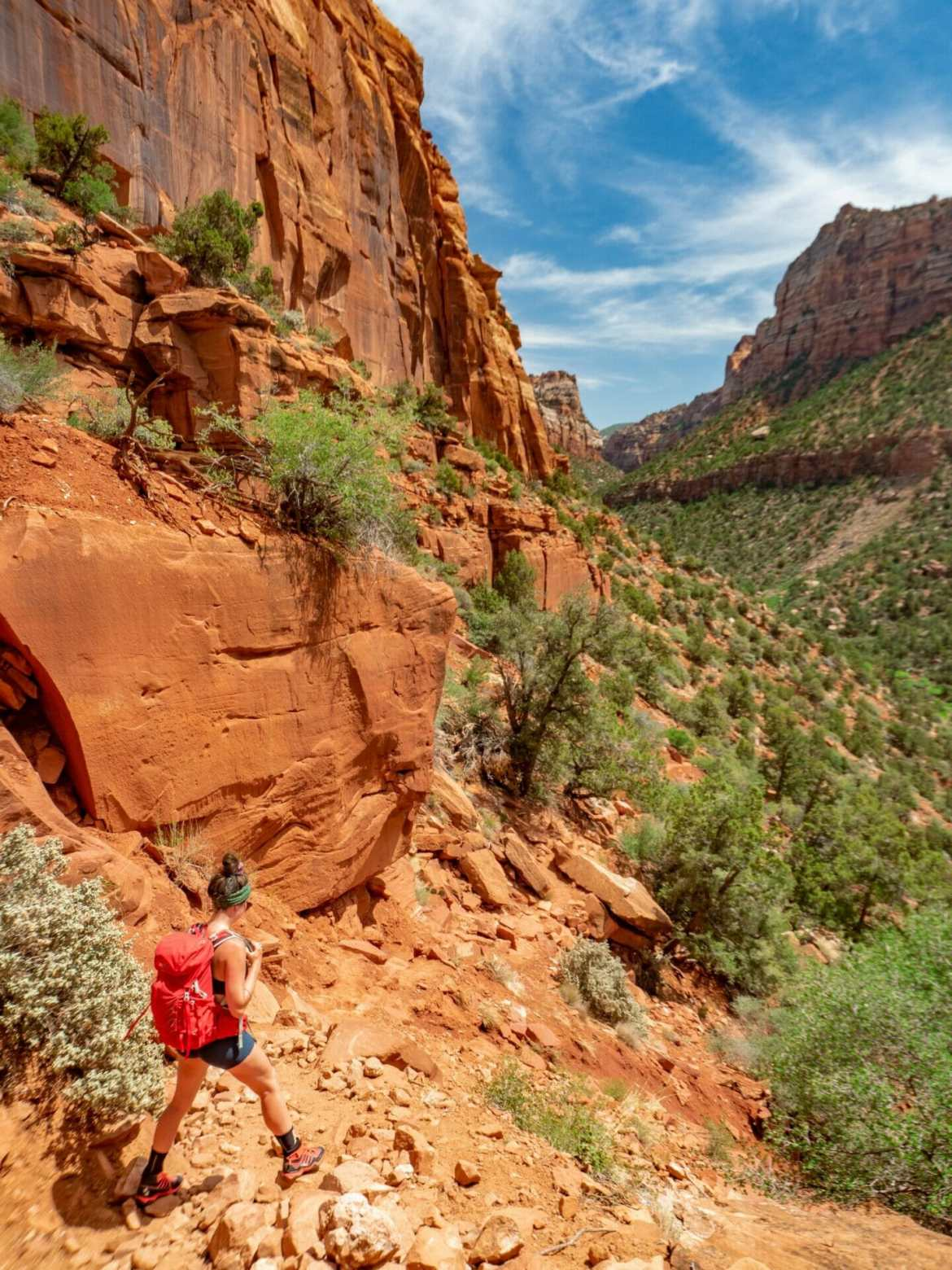 Zion National Park itinerary best hikes Subway