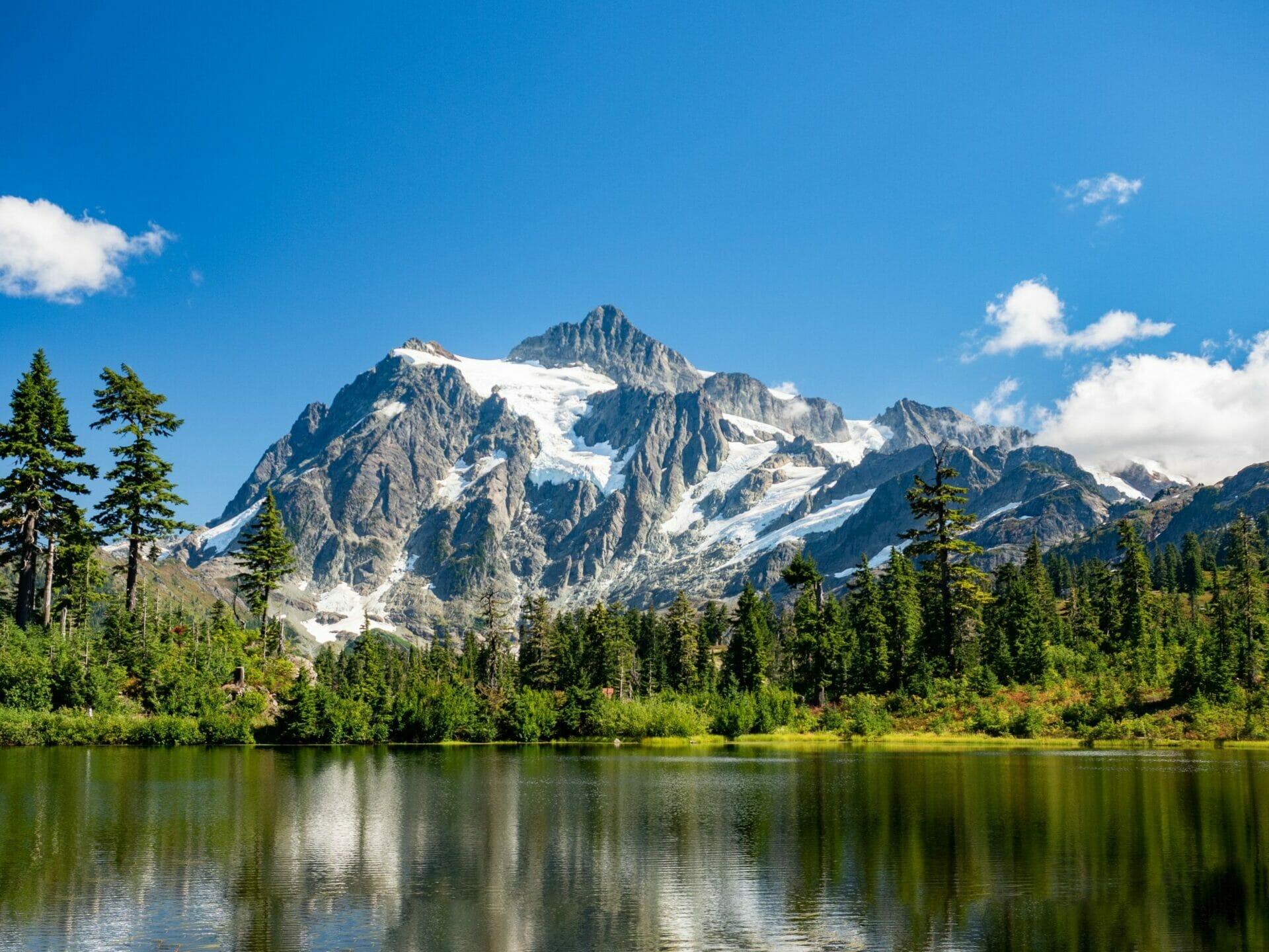 Mt Baker National Forest Mt Shasta