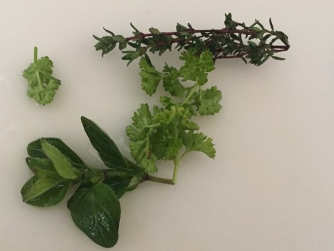 Fresh Oregano , Herbs
