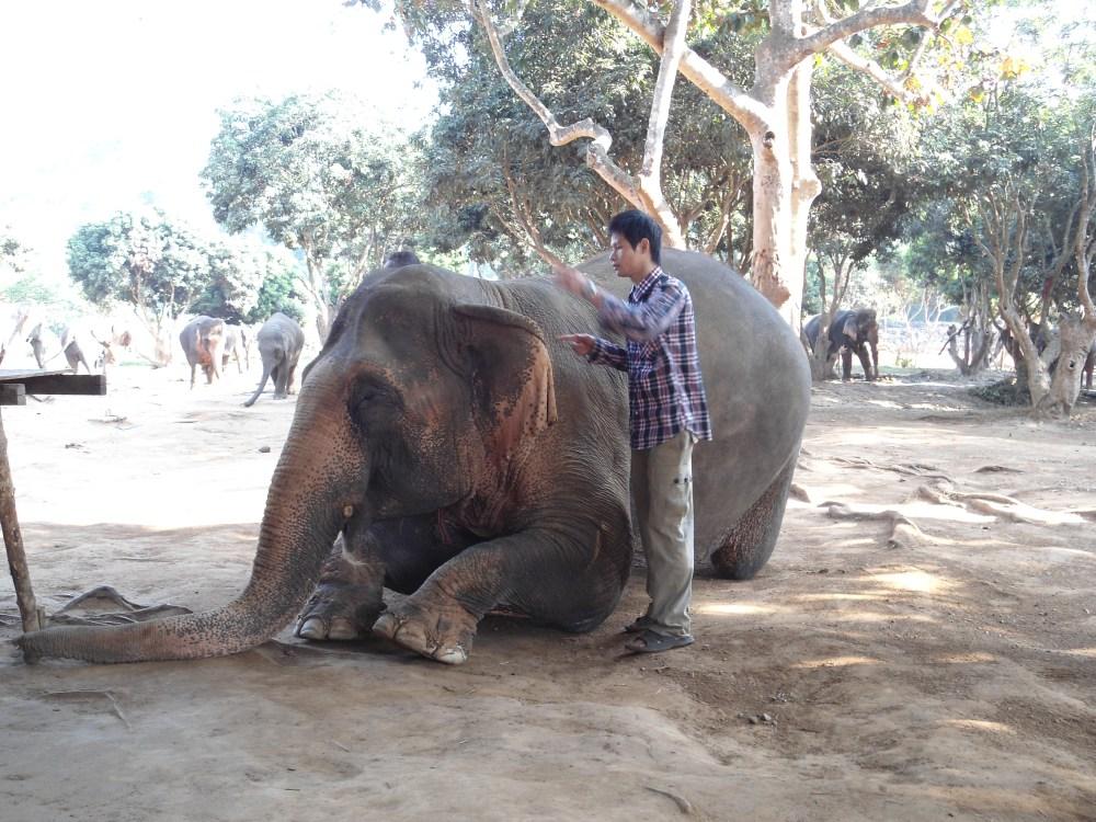 Chiang Mai Has My Heart! (5/6)