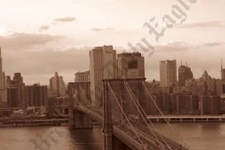 Aerial View of the Brooklyn Bridge 03/24/2008 - Brooklyn Archive
