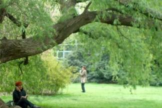 Sakura Matsuri at the Brooklyn Botanic Garden 2008. - Brooklyn Archive