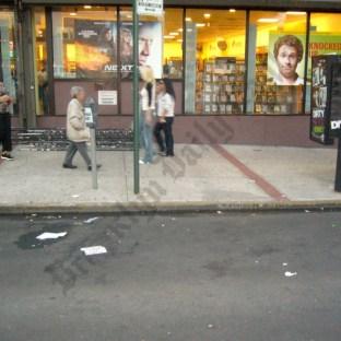 Third Avenue Festival 2007 - Brooklyn Archive