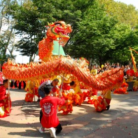 Asian Lion and Dragon Dance Festival 09/10/2017 - Brooklyn Archive