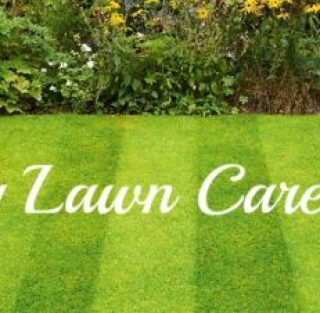 Spring Lawn Care Tips – Calgary Landscaping