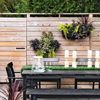 Gardening For Beginners | Brooklyn Berry Designs |