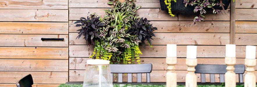 Planters: Gardening For Beginners