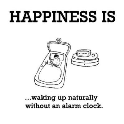 Wake Up Happy With Natural Alarm Clocks