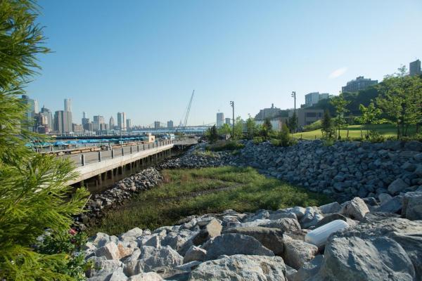 BBP Opens Pier 5 Uplands - Brooklyn Bridge Park