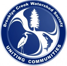 BCWS logo small