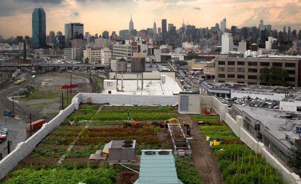 newyork-roofspace