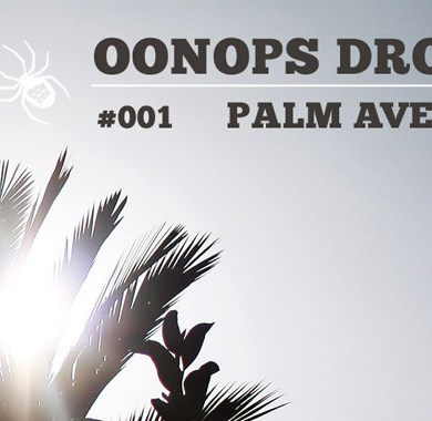 Photo of Oonops Drops – Palm Avenue