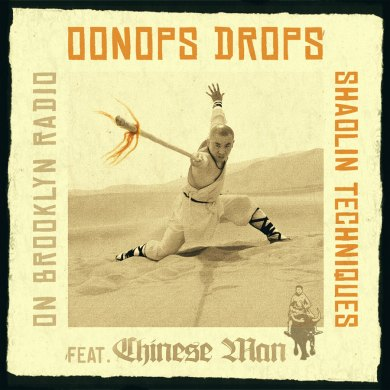Photo of Oonops Drops – Shaolin Techniques