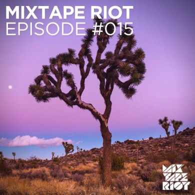 Photo of Mixtape Riot #15