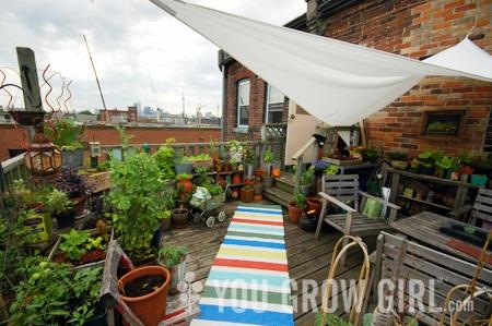 yougrowgirl_roof_garden_photo