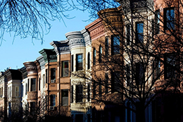 The Neighborhoods - Crown Heights