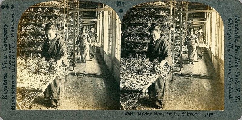 Making Nests for the Silkworms, Japan.