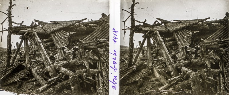 Remembrance Day (Armistice Day) 2019 stereoscopic 3D photograph (stereoview)