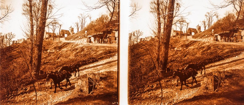 European amateur glass stereoview depicting two horses outside a makeshift encampment built into a hillside