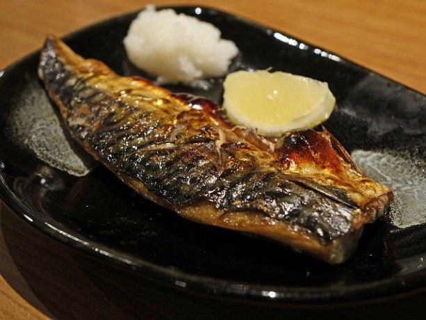 fish-408536_640