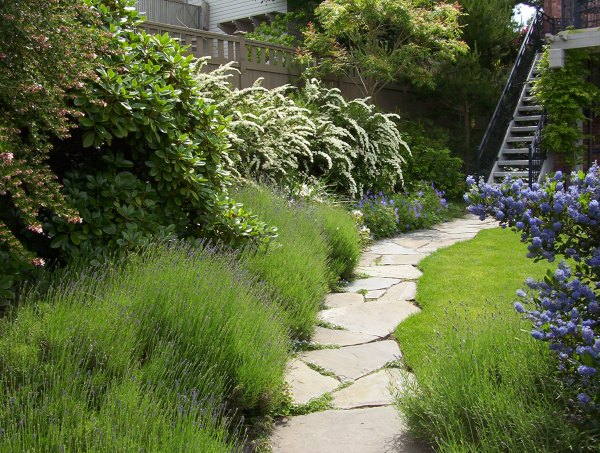 landscaping garden design ideas residential garden design   Brooks Kolb LLC - Seattle