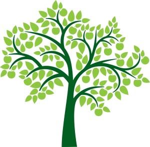 Family Tree Clipart #24742