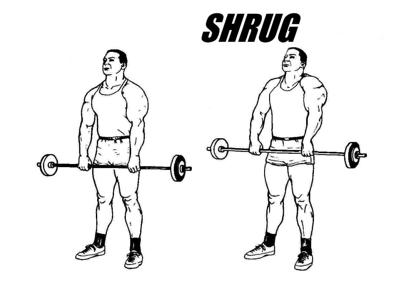 Get Massive Traps By Using These 4 Great Exercises