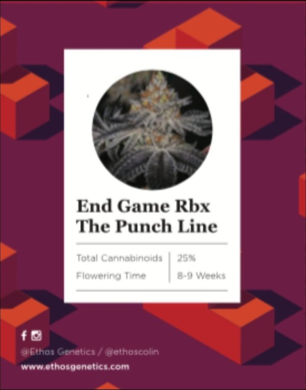 """Ethos - End Game Rbx """"The Punch Line"""""""