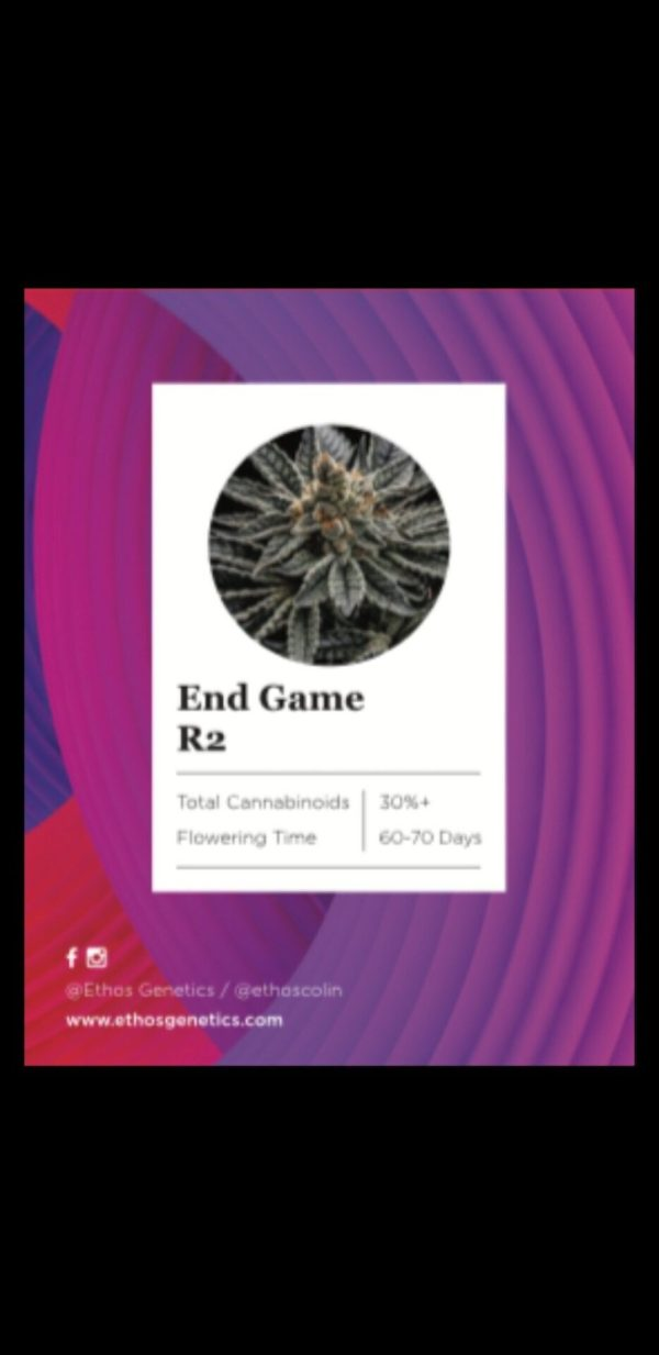 Ethos - End Game R2